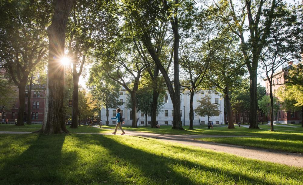 Student walking through Harvard Yard